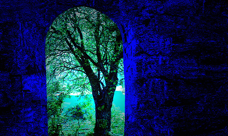 Abstract image of a tree viewed through a window. Keywords: vertical, blue, green, tree, stone, bricks, nature, illustration, new art, Norway, artwork, photo art, dreamy, fantasy, water, colours, colors, artistic, creative, nobody, art, Europe, window, abstract Modelreleased: N/A Property Released: N/A Photolibrary, Monsoon Images, 0608